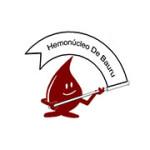 hemonucleo-bauru-150x150